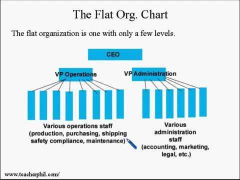 tall and flat organisational structure business essay Management assignment free sample on organization management made by our phd management assignment help experts call +1(213)438-9854 or livechat now  bringing flat.
