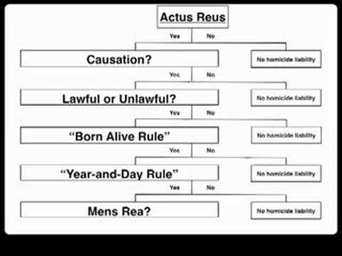 actus reus and mens rea essay Every crime involves a physical act, or actus reus, and a mental act, or mens rea, the non-physical cause of behavior (guilty mind) the mens rea is the mental element required for a crime, and if absent excuses the defendant from criminal responsibility and punishment.