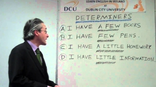 How do you use 'Determiners' in the English language? - Learn English at Dublin City University