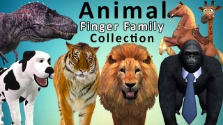 Animals Cartoons for Children Finger Family Children Nursery Rhymes | Animals Finger Family Rhymes