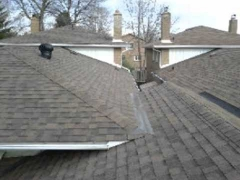 Cambridge Shingles