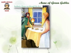 English Learning Audio Book, through picture, story - English subtitle 29